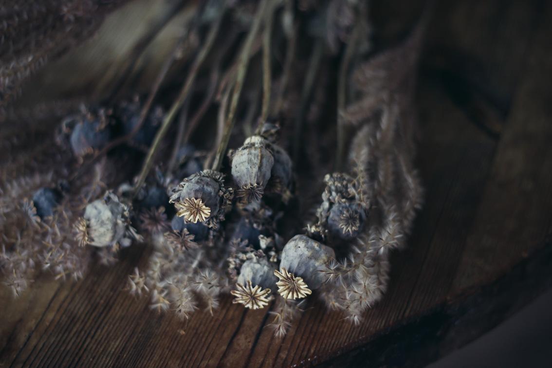 annacate-driedflowers